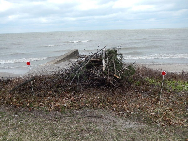 New Beach Burn Pile